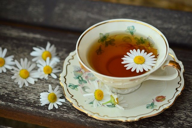 Chamomile tea for dogs